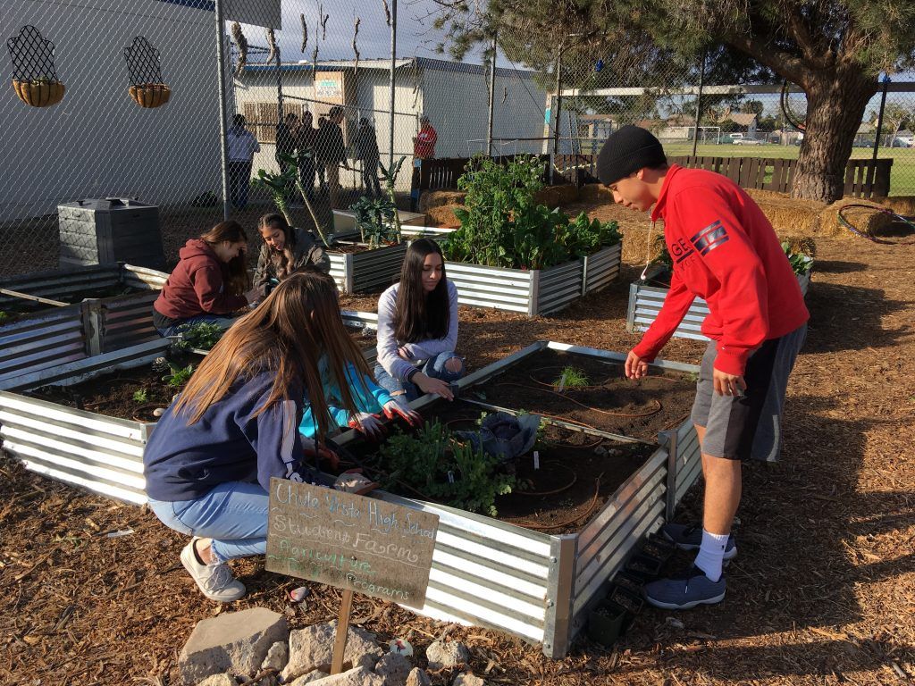 CVHS students working the garden box