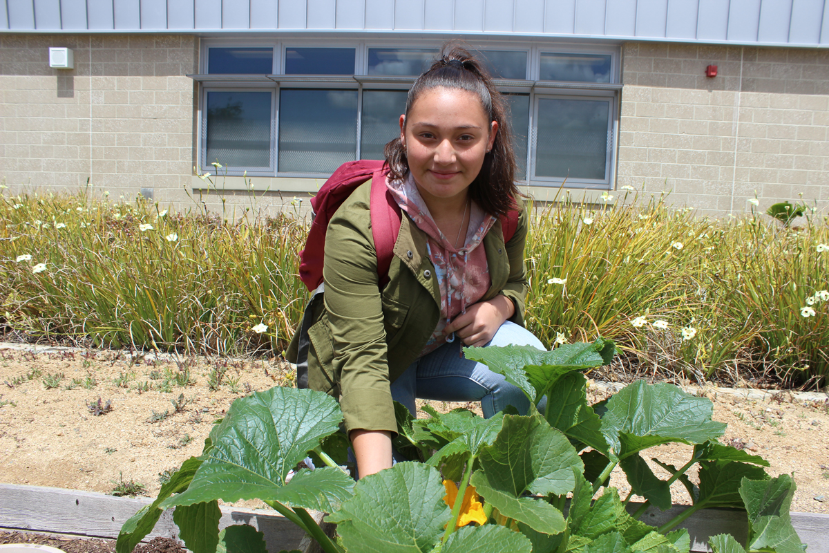 Student with zucchini plant